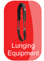 hh-lunging-equipment-button