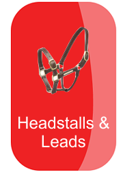 hh_headstalls__leads_button