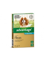 large-152006 advantage dog 4 10kg aqua 6 s