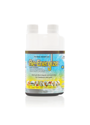 re-energize_250ml