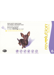 revolution-dog-purple grande