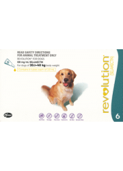 revolution-dog-teal-20-40kg