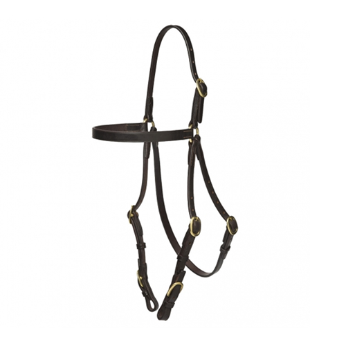 bridle_buckle_25312